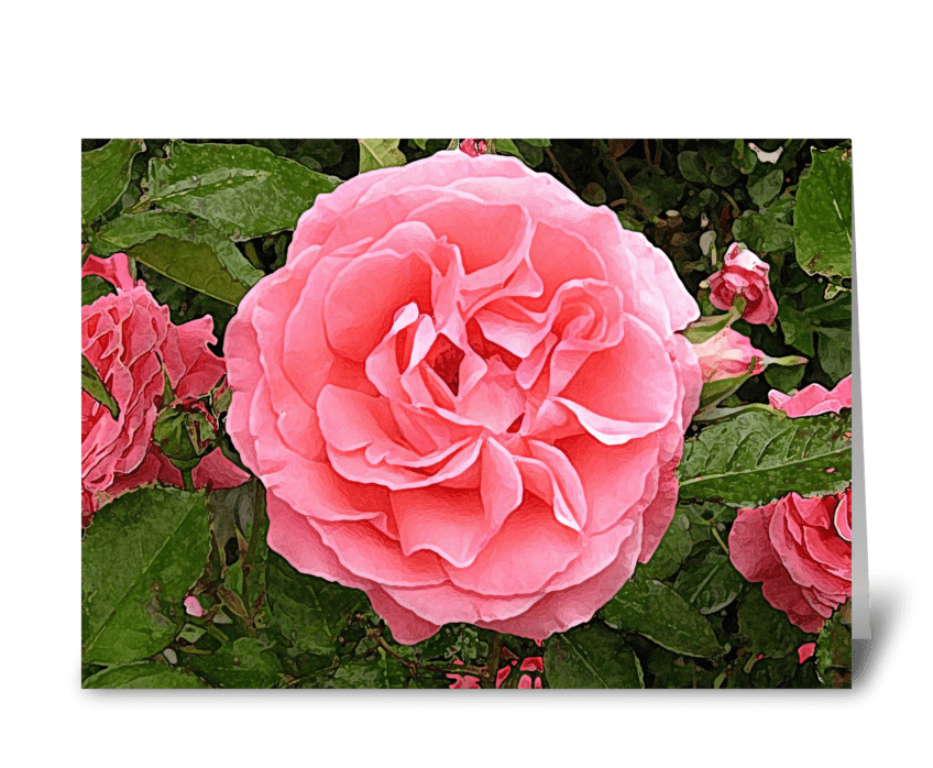 Pink of perfection greeting card