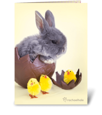 Cuddly Easter Bunny greeting card