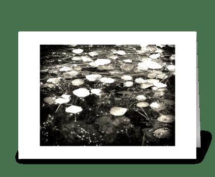 Drops Like Stars greeting card