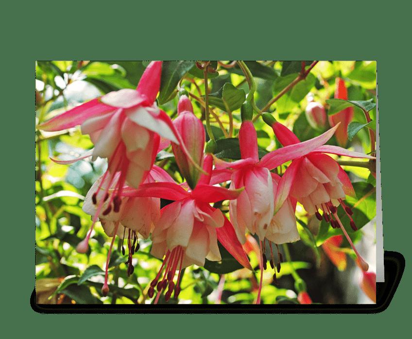 Springtime Pink greeting card