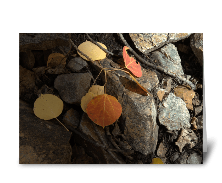 Autumns Forest Floor greeting card