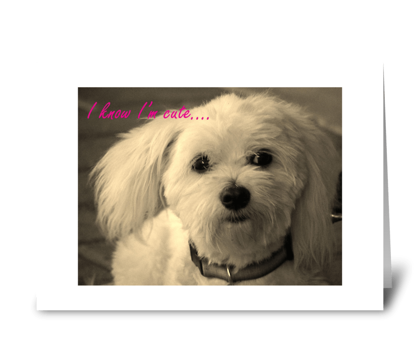 I'm Cute! greeting card