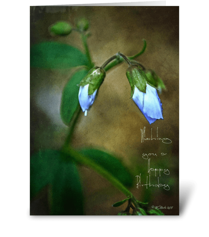 Little Blue Bud Birthday Card greeting card