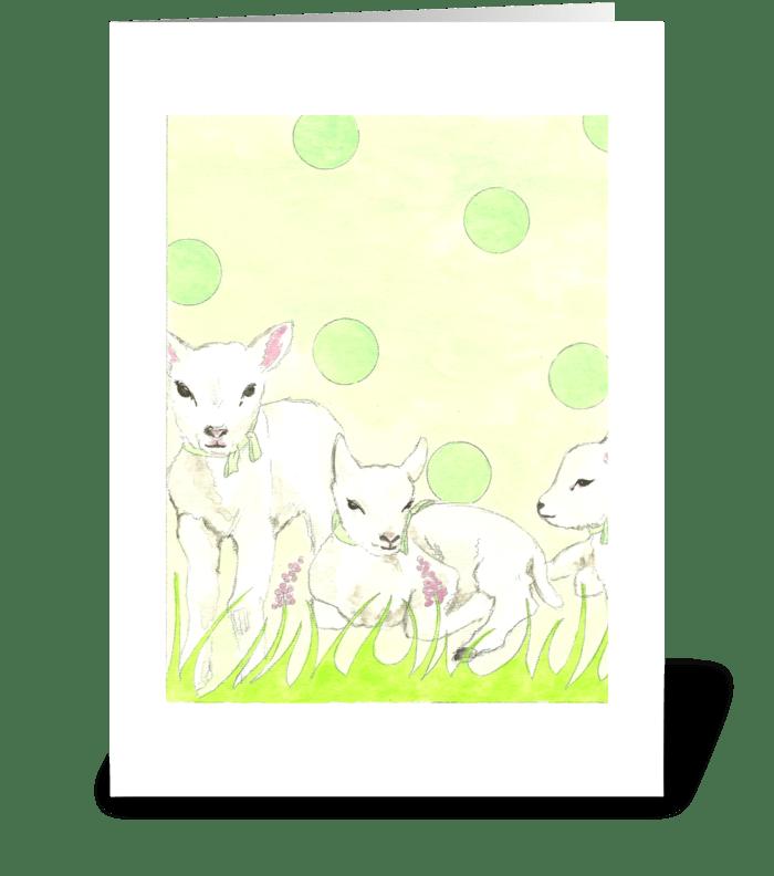 Polka Dot Lambs 2 greeting card