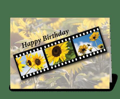Birthday Sunflower Filmstrip greeting card