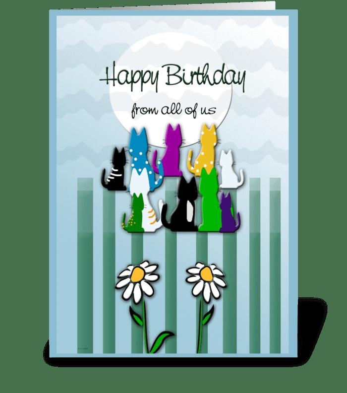 Colorful Kitties, Birthday Wish greeting card