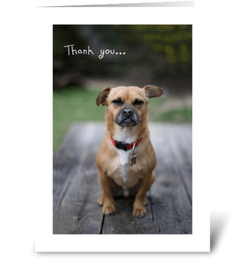 A Note of Thanks greeting card
