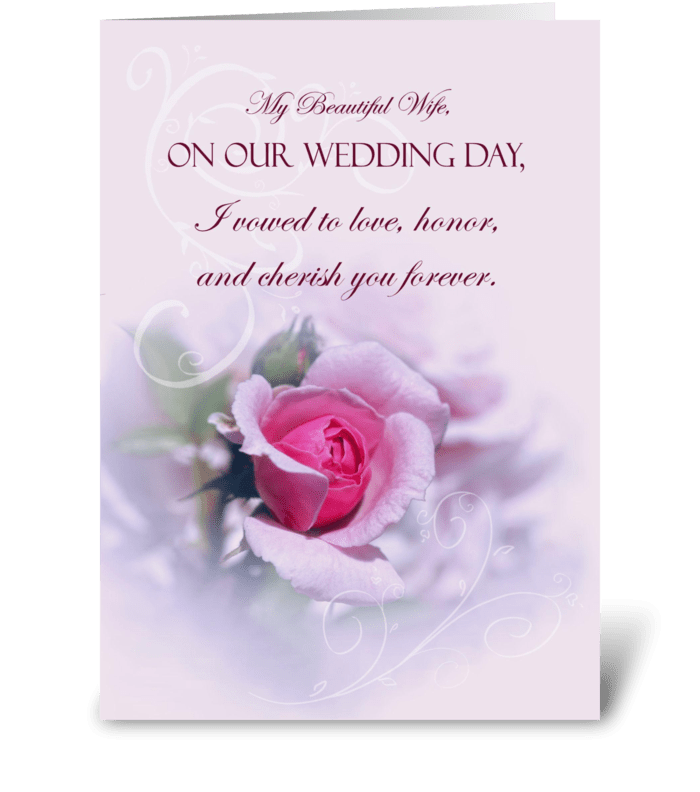 Pink rose wedding anniversary for wife send this greeting card pink rose wedding anniversary for wife greeting card m4hsunfo