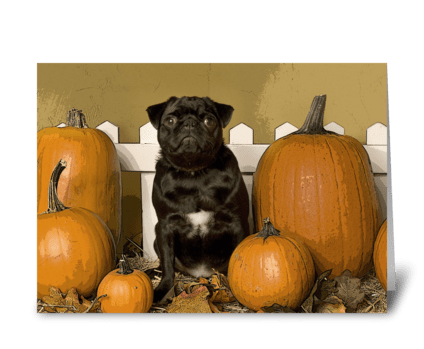 Greeting cards designed by pets arent rude card gnome fall holidays cute dogs greeting card m4hsunfo