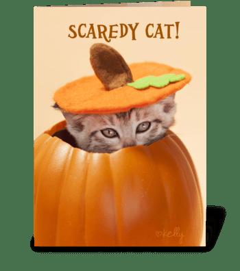 Scaredy Cat Pumpkin Kitten greeting card