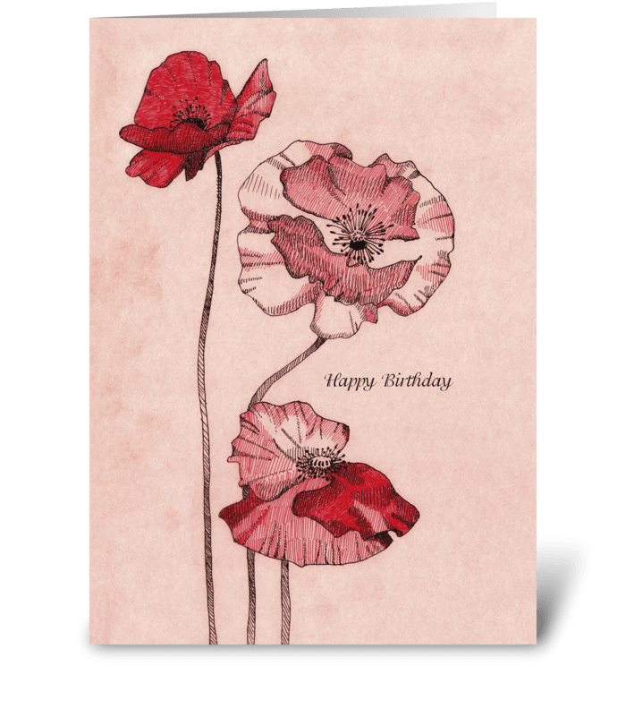 Birthday_drawing-poppy-flowers greeting card