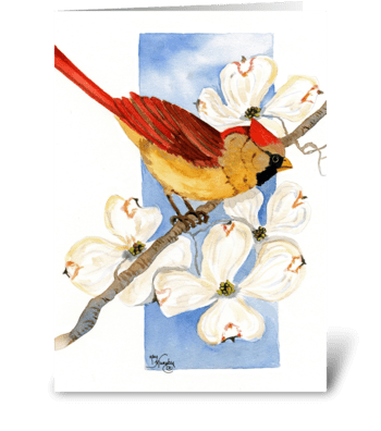 Cardinal with Dogwoods greeting card