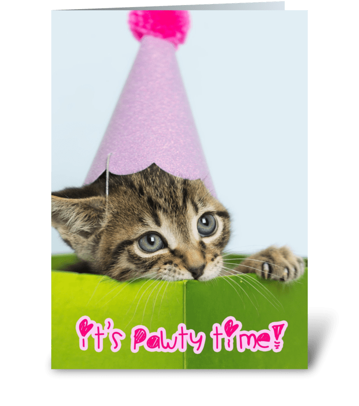 Pawty Time Birthday Kitten greeting card