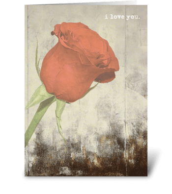 i love you. greeting card