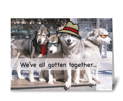 Birthday from Husky Group, Funny Hats greeting card