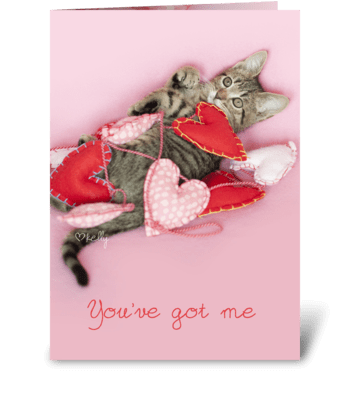 You've Got me Wrapped up in Love Kitten greeting card