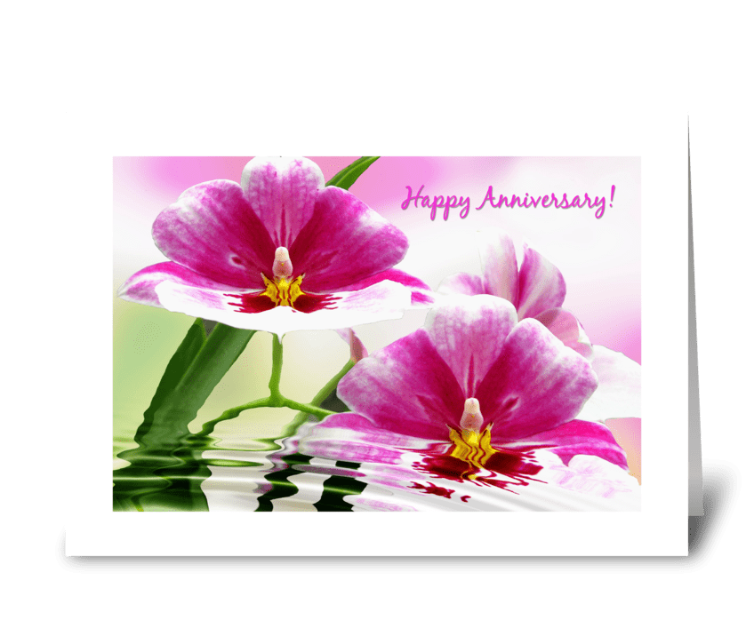 Orchid dip greeting card