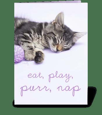 Birthday Play Purr Nap Kitten greeting card