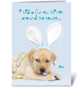 Yellow Labrador Retriever Easter Bunny greeting card