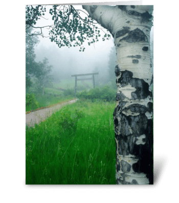 Aspen Gate Mist greeting card