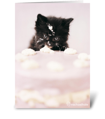 Let there be cake! greeting card
