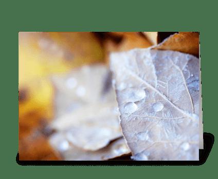Icy Leaf greeting card