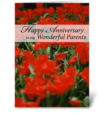 4005 Parent's Anniversary Red Flowers greeting card
