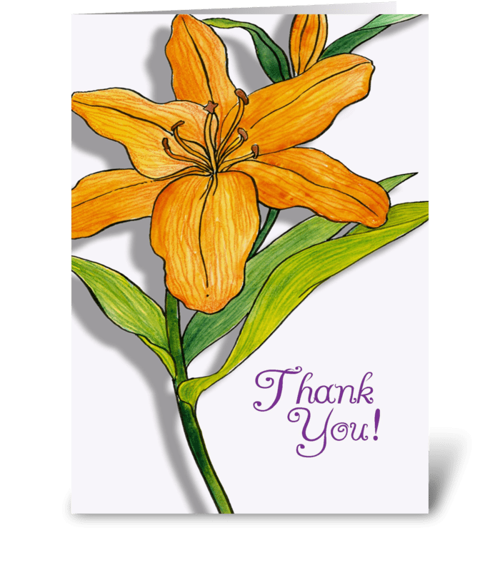 Orange Lily Thank You greeting card