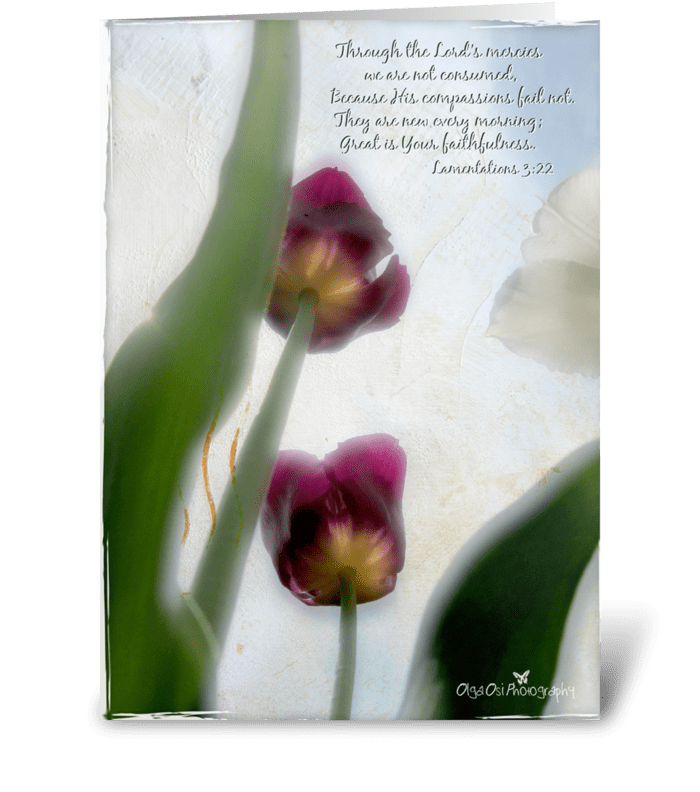 His mercies greeting card