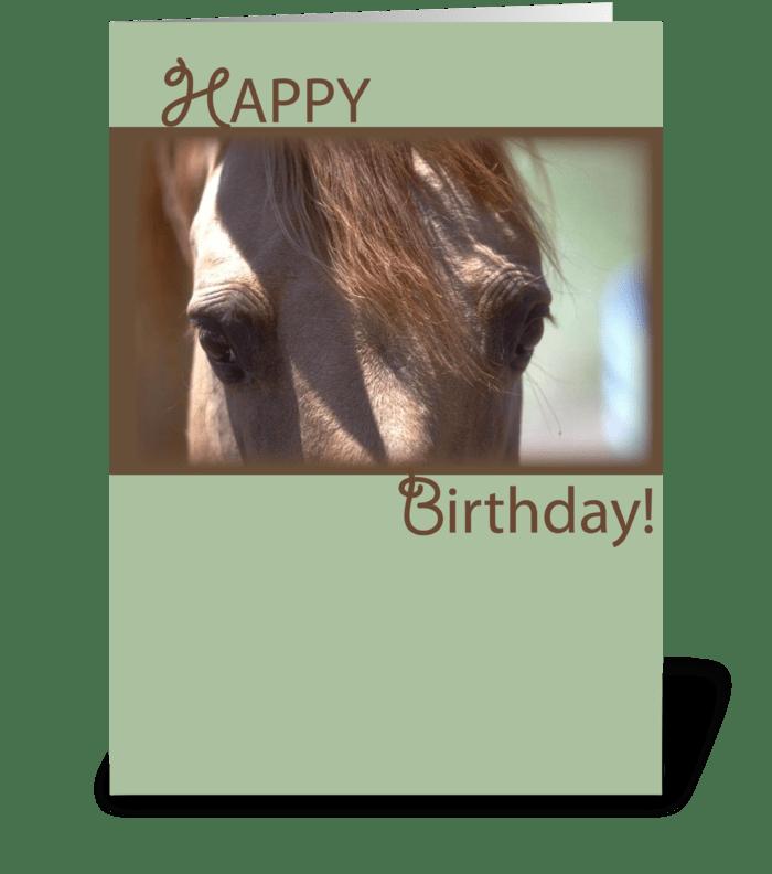 4340 Horse Eyes Birthday greeting card