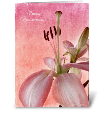 Lily Anniversary greeting card