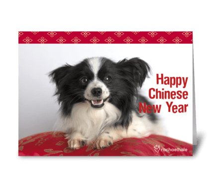 Happy Chinese New Year! greeting card