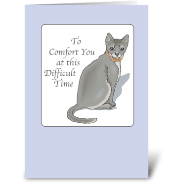 Cat Sympathy, Pet Loss, Grey Cat greeting card