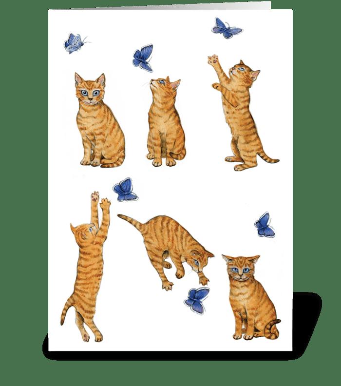 Belated birthday kitten greeting card