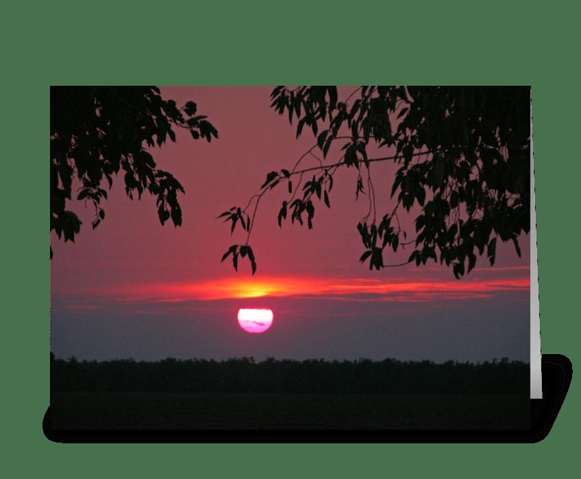 Shades Of Scarlet greeting card