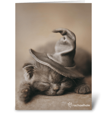 Halloween Kitten in Witch Hat greeting card
