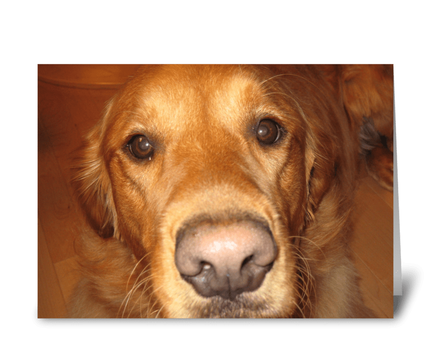 Doggone Mother's Day greeting card