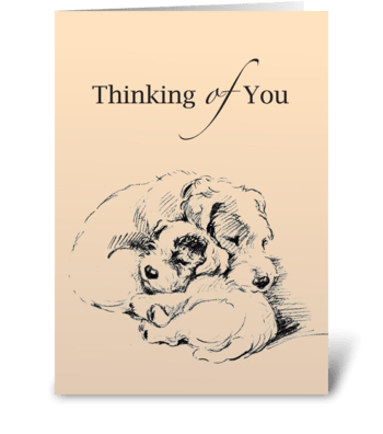 Cuddly Dogs, Miss You greeting card