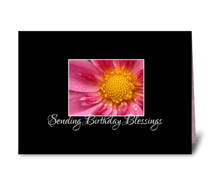 Pink Flower Birthday Blessings greeting card