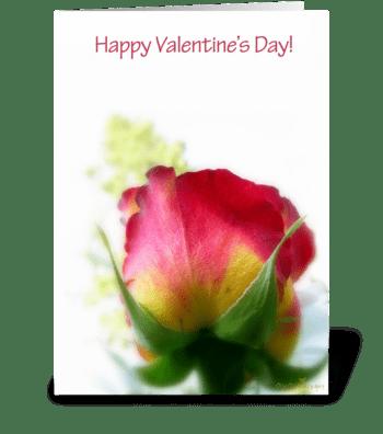 Rose uplifting greeting card