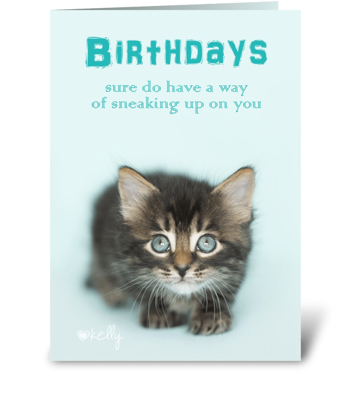 Birthday Sneaking Up On You Kitten greeting card