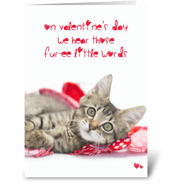 Tabby Kitten Funny Valentine Furee words greeting card