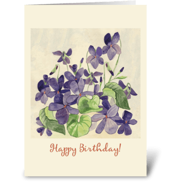 Birthday-floral-violets greeting card