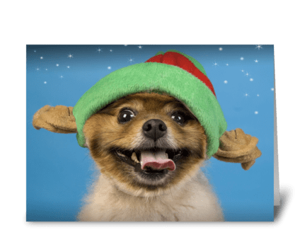 Little Dog Jingling greeting card