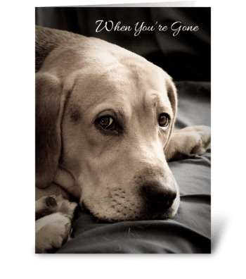 Missing You Sad Dog greeting card