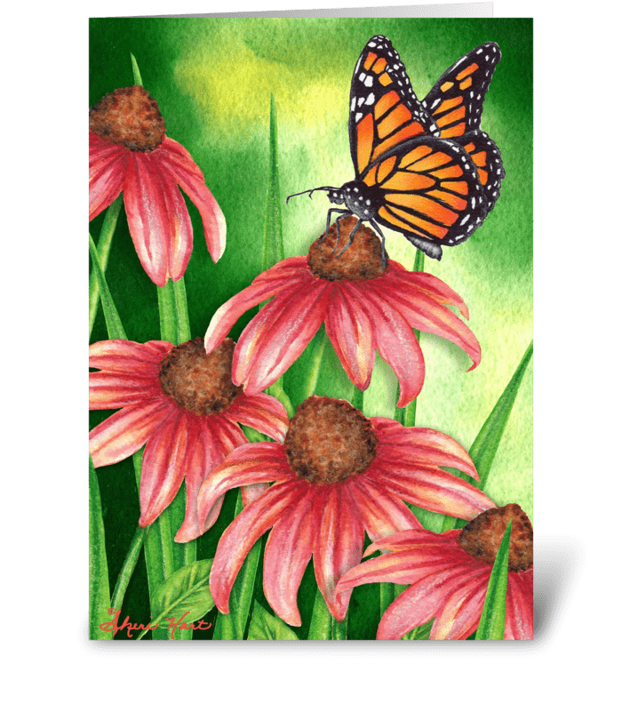Monarch & Coneflower greeting card
