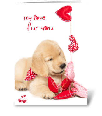 My Love Fur You Puppy Valentine greeting card