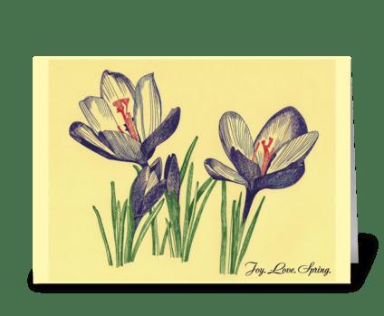 Spring_flowers-crocuses-drawing greeting card
