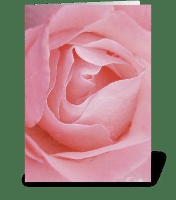 Floral_rose-pink2 greeting card