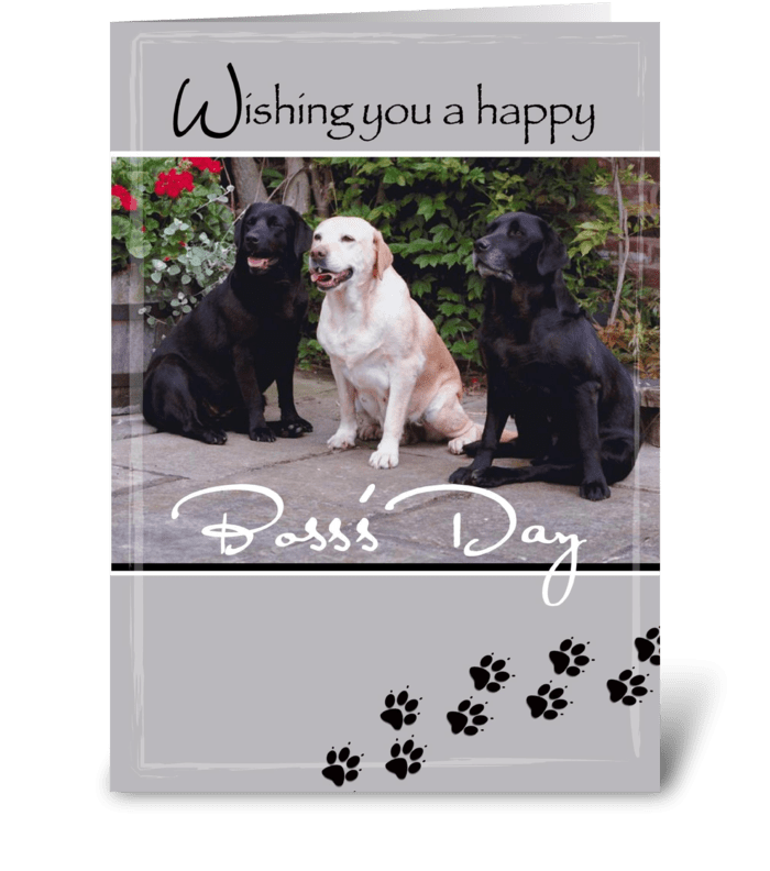 Boss's Day Labs Dogs, from Group greeting card